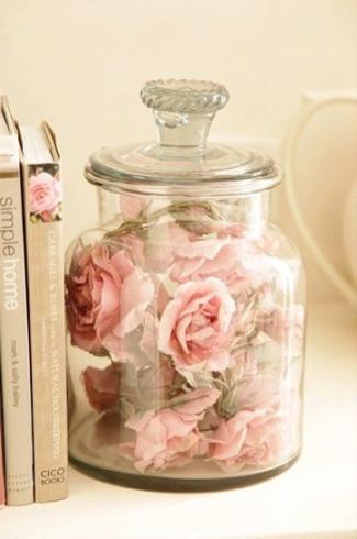 jarron rosa