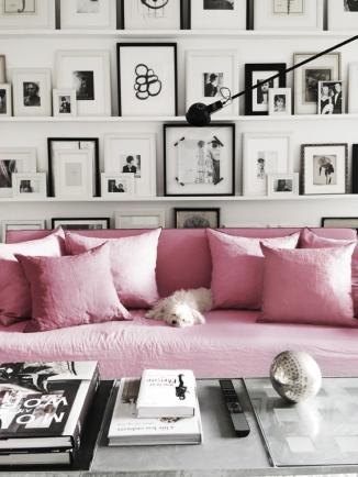 sala sillon con perro